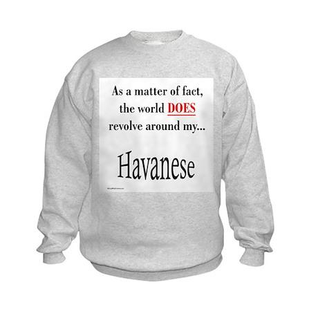 Havanese World Kids Sweatshirt