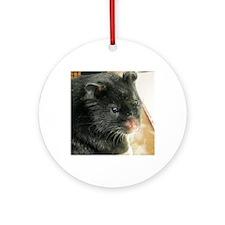 Black Hamster Round Ornament