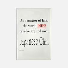 Chin World Rectangle Magnet