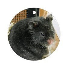 Black Hamster Round Ornament