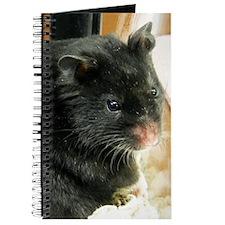 Black Hamster Journal
