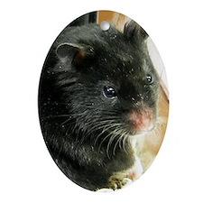 Black Hamster Oval Ornament