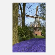 A carpet of purple hyacin Postcards (Package of 8)