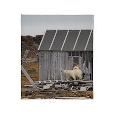 Polar Bear (Ursus maritimus) walking Throw Blanket