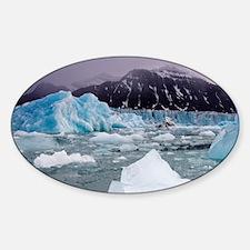 Deep blue icebergs floating near fa Sticker (Oval)