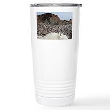 Polar bear (Ursus maritimus) cu Travel Mug