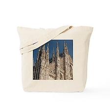 Italy, Milan Province, Milan. Milan Cathe Tote Bag