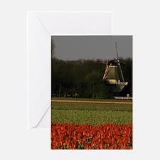 Europe, Netherlands, Keukenhof. Tuli Greeting Card
