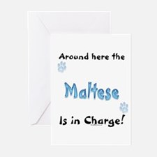 Maltese Charge Greeting Cards (Pk of 10)