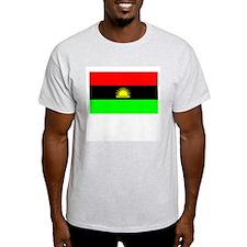 Biafran flag T-Shirt