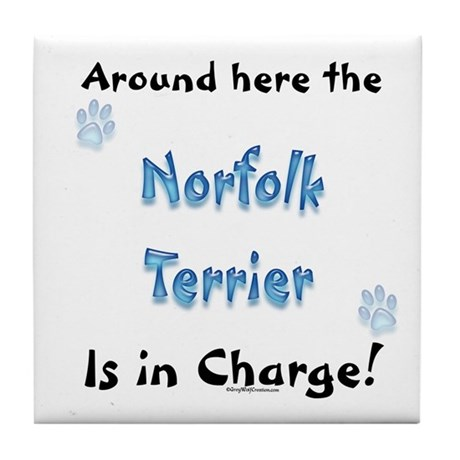 Norfolk Charge Tile Coaster