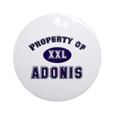 Property of adonis Ornament (Round)