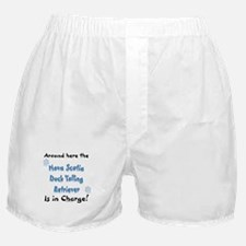 Toller Charge Boxer Shorts