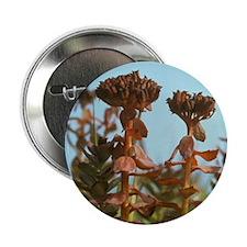 "Arakamchechen Island. Tundra floweram 2.25"" Button"