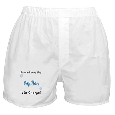 Papillon Charge Boxer Shorts
