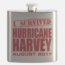 Unique Houston Flask