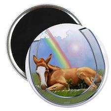 pot of gold--horse shoe-T Magnet