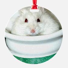 White-Albino Hamste... Ornament