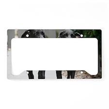 IMG_0082 License Plate Holder