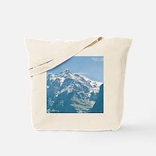 Switzerland. Grindelwald Valley below the Tote Bag
