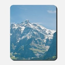 Switzerland. Grindelwald Valley below th Mousepad