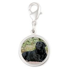 Labrador Retriever 9Y262D-047 Silver Round Charm