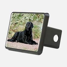 Labrador Retriever 9Y262D- Hitch Cover