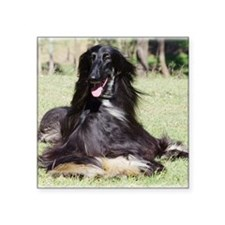 "Afghan Hound AA017D-115 Square Sticker 3"" x 3"""