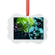 df1 Ornament