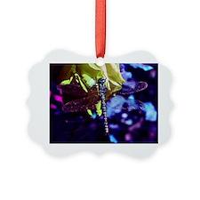 df6 Ornament
