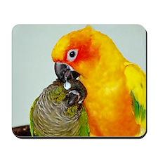 bird-laptop Mousepad