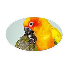 bird-laptop Oval Car Magnet