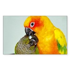 bird-laptop Decal