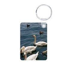 Swan and duck in the Zuric Keychains