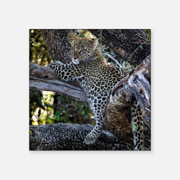 "Leopard Cub Square Sticker 3"" x 3"""