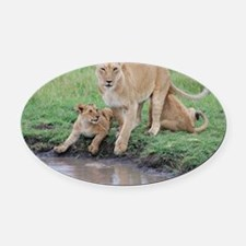 Kenya Cover Oval Car Magnet