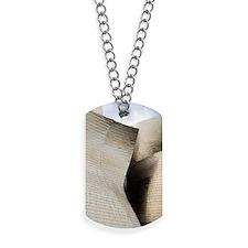 Reflective titanium panelsMuseum designed Dog Tags