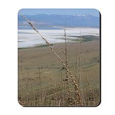 Great Salt Lake Mousepad