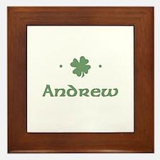"""""""Shamrock - Andrew"""" Framed Tile"""