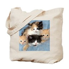 shelter-kittensDSC05383a Tote Bag