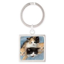 shelter-kittensDSC05383a Square Keychain