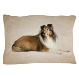 Collie Pillow Cases