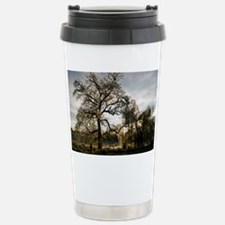 icy willow sunset16x20 Stainless Steel Travel Mug