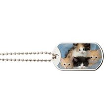 shelter-kittens12x20 Dog Tags