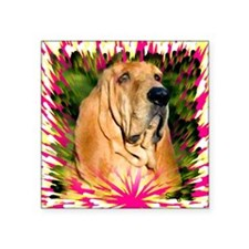 "Bloodhound Square Sticker 3"" x 3"""
