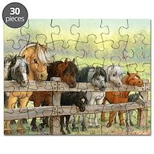 PONIES Puzzle