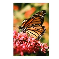 jigsaw006 Postcards (Package of 8)