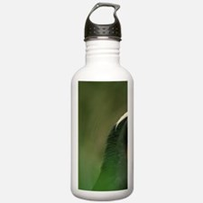 Tufted Puffin (Fraterc Water Bottle
