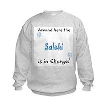 Saluki Charge Sweatshirt