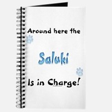 Saluki Charge Journal
